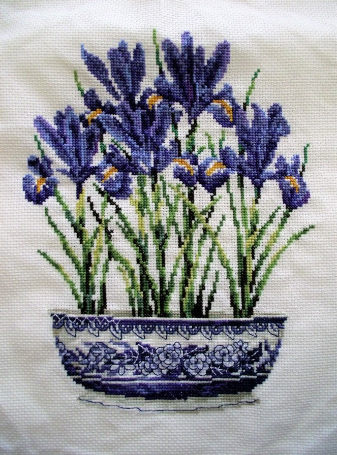 Iris cross-stitch
