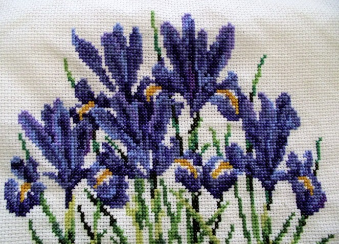 Close-up Iris Cross- Stitch
