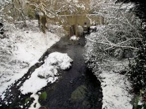 lm stream